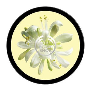 Body Butter Moringa