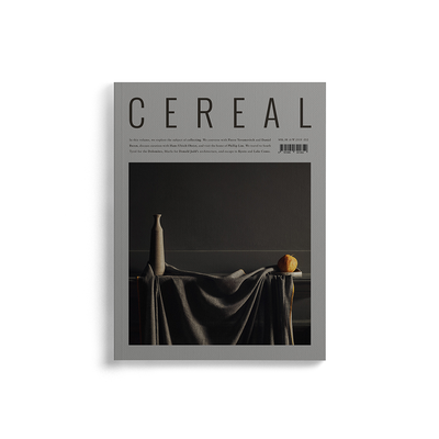Revista Cereal Vol. 16
