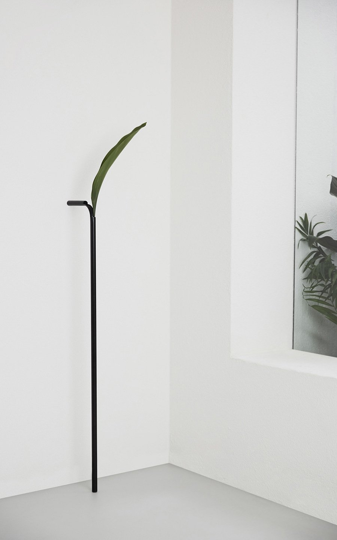 DET: Vaso Solo 2