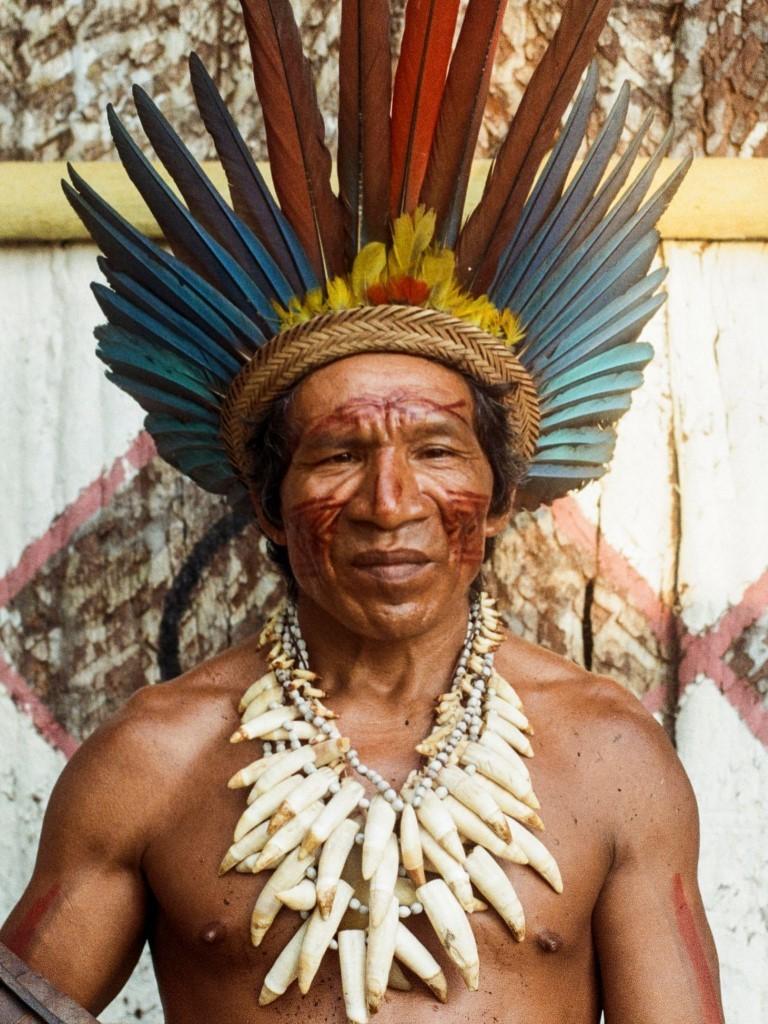 [Territórios] 2ª Seção - A Jornada (Amazônia1)